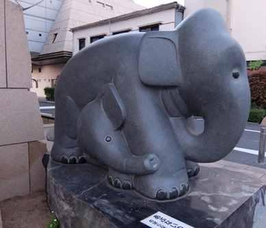 消防館の小象