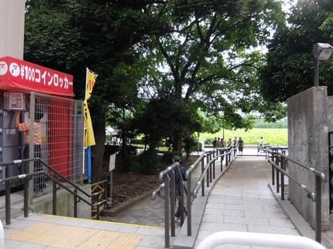 シノバスの池への通路