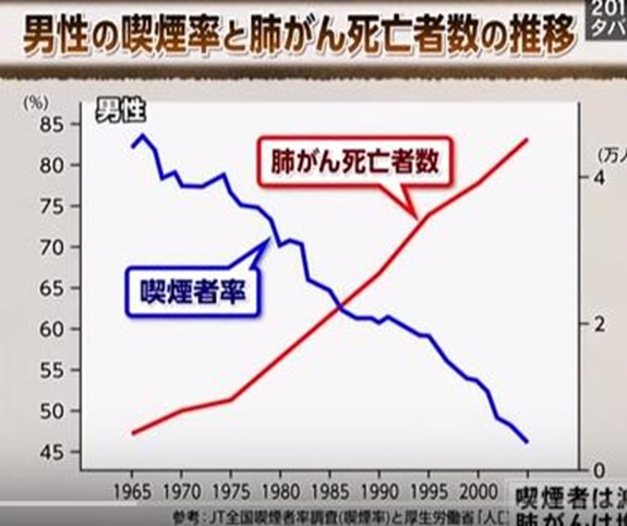 喫煙率と肺がん死亡者数のグラフ[4]