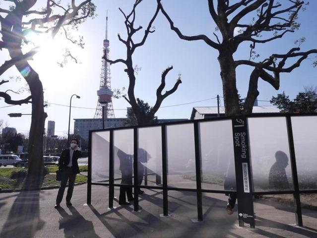 東京タワーがよく見えます。