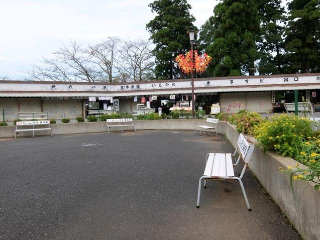 新勝寺奥山広場
